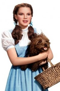 Wizard of Oz, Judy Garland, Dorothy Impersonator